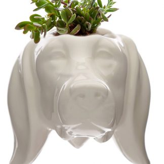 Dog Wall Mounted Planter Ceramic