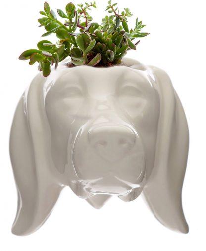 Dog Wall Mounted Planter Ceramic