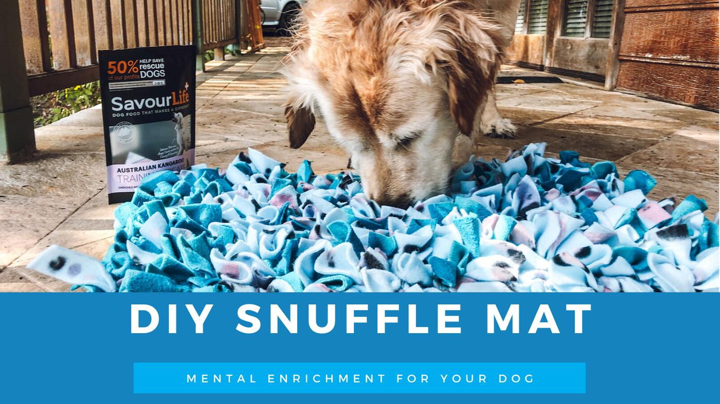 DIY Snuffle Mat
