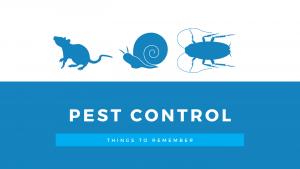Pest Control Dog Danger